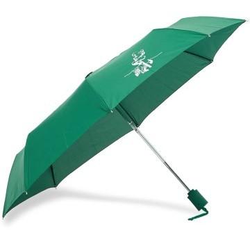 Stilinga dovana vyrui žalias skėtis